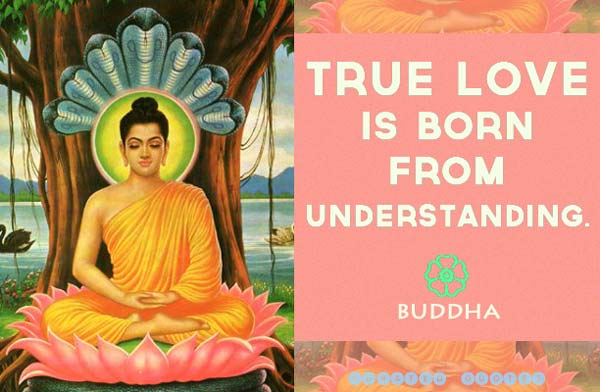 Buddhist Quotes On Love Captivating 21 Love Quotesbuddha  Curated Quotes