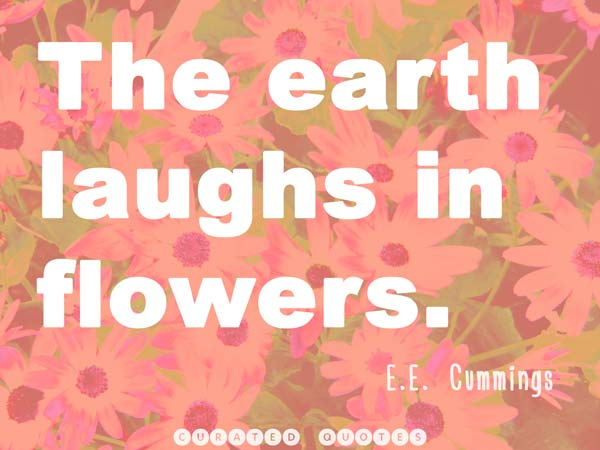 flowers-picture-quote