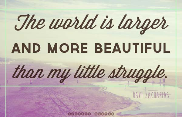 My little struggle quote