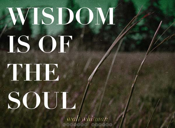 Wisdom Of The Soul