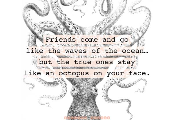 Quotes About Friendship Amusing The 104 Best Friendship Quotes Ever  Curated Quotes